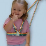 l_safety harness and reins_large