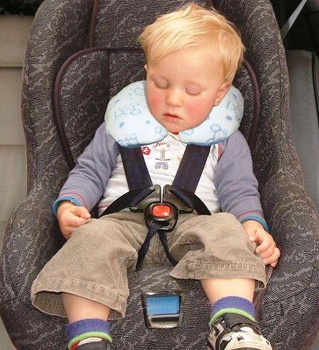Travel Pillows Amp Beds Little Gulliver